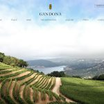 Picture of Gandona Winery website