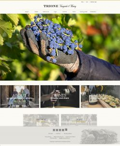 Image of Trione Winery Website